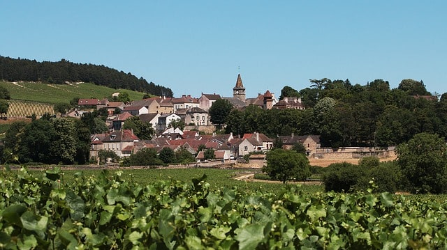 vigne éligible loi malraux bougogne franche comte