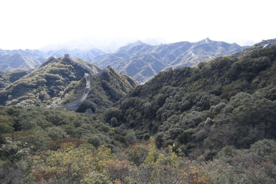 Un paysage de la région Grand Est